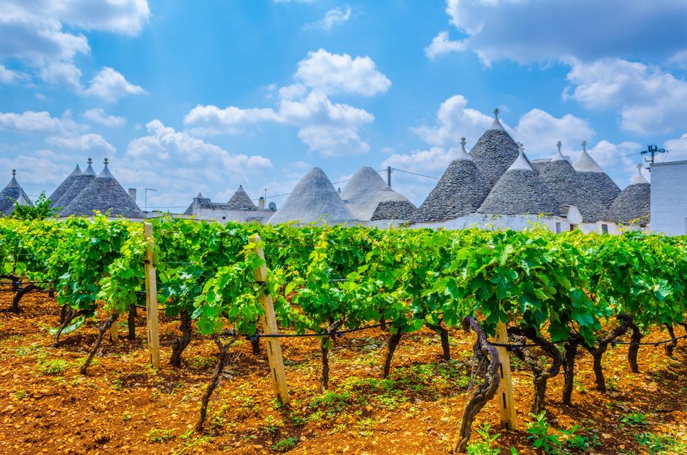Dit zijn de leukste vakantiehuizen met wijnbeleving in Italië